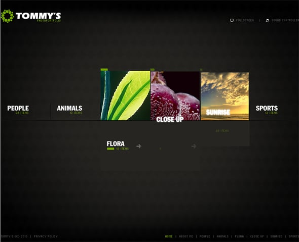 flash-cms-template-28943
