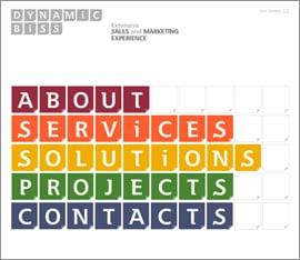 business-flash-cms-website-01