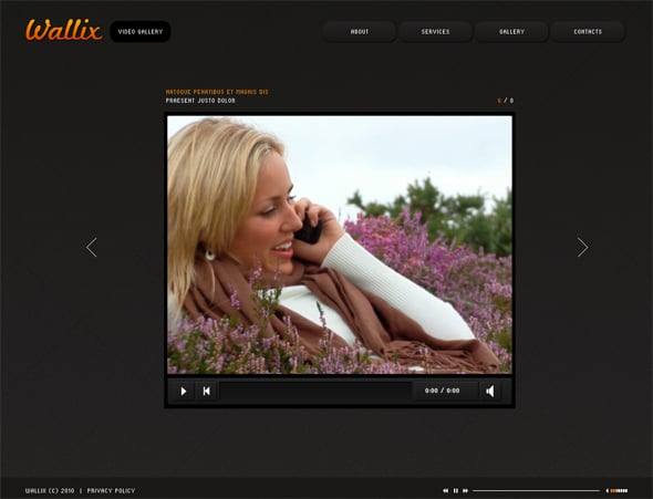 flash-video-gallery-01