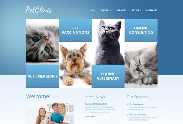Color Combination - Blue Website Template