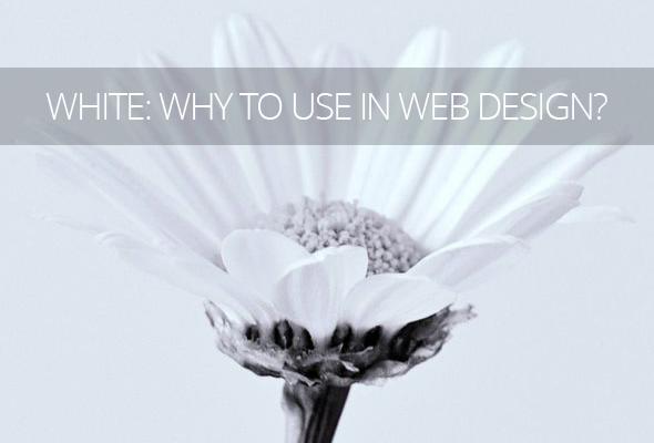 White in Web Design