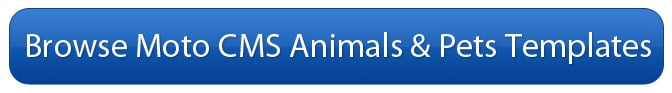 Animals and Pets Templates