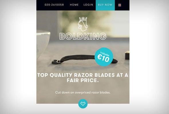 Bold King Website