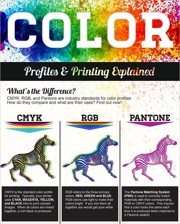 The Logo Company Best Infographics on Colors