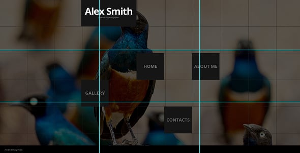 Rule of Thirds Photo on Website Template