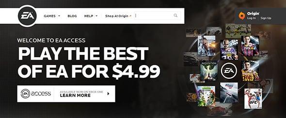 Search Box in Website Design