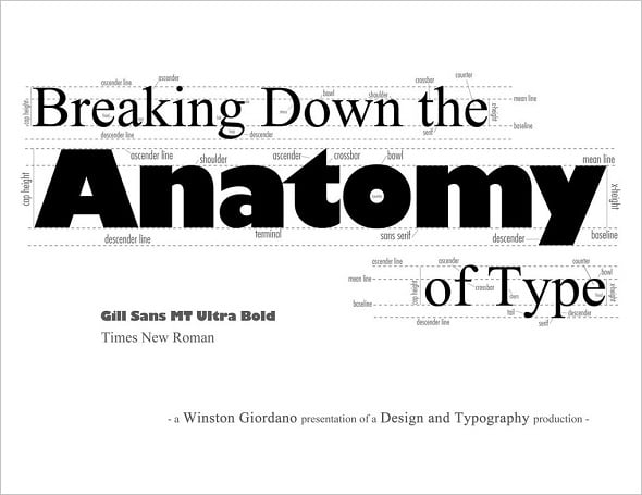 Learn Typography Breakdown