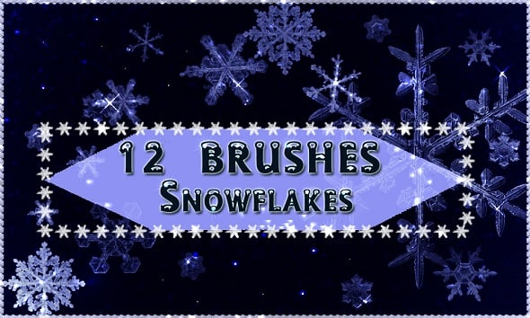 12 Snowflakes Brushes