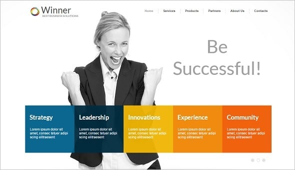 Best Website templates 2014 - Clean Website Template for Business