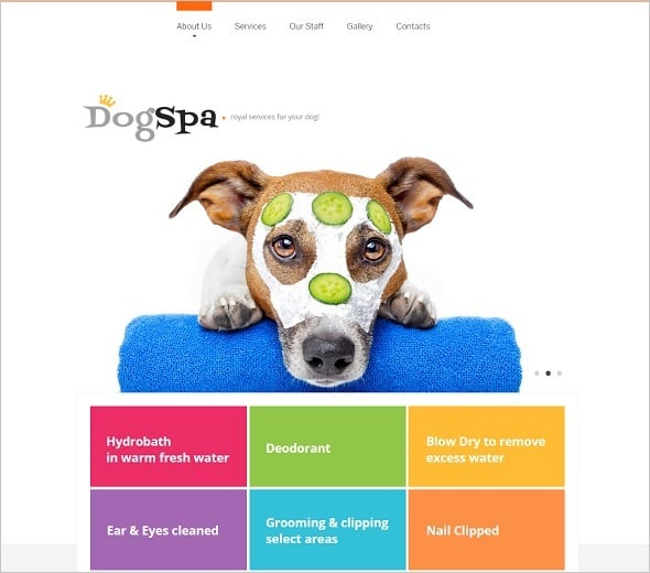 Create a website for dog breeders - Metro Style Dog Website