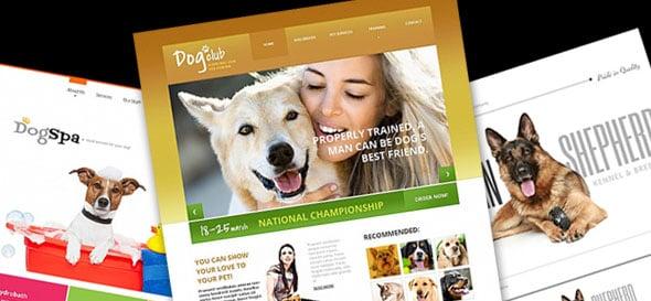 Сайт для собаководов: простые советы по созданию