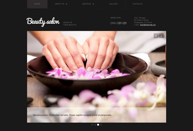 Responsive Website Templates by MotoCMS 3.0 - Beauty