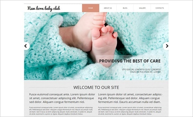 MotoCMS Independence day promo - Baby Template