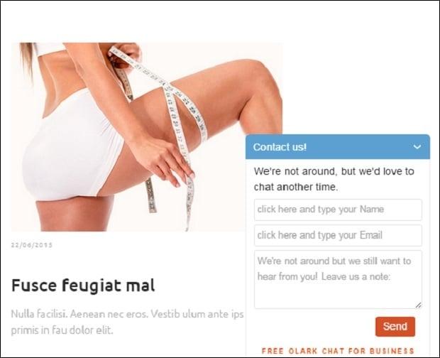 olark - chat widget window