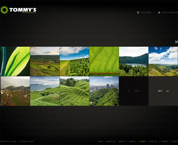 flash-cms-template-28943-01