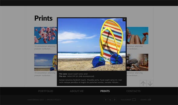 Flash Photo Gallery Template with a Great Zoom Option