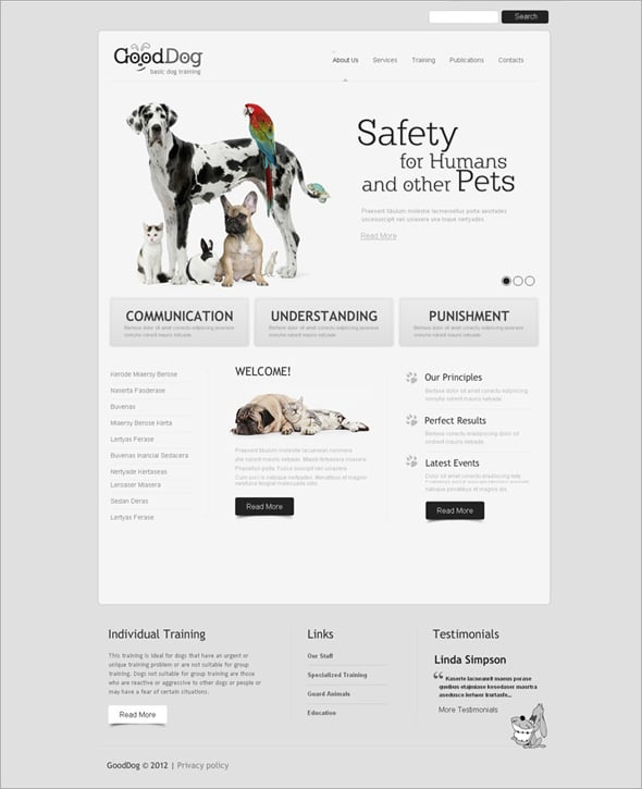 Flash CMS Template for Dog Training Classes