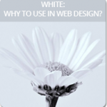 White: Why to Use in Web Design?