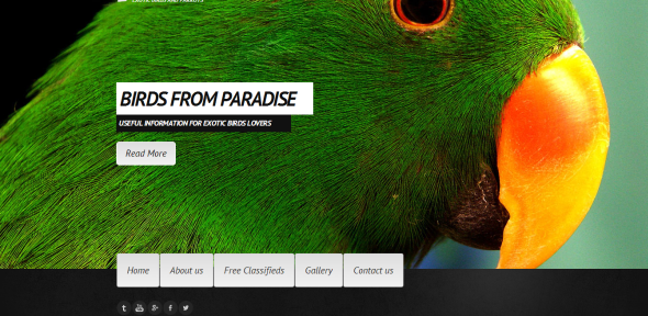 Website Template with an Interesting Menu Bar Position