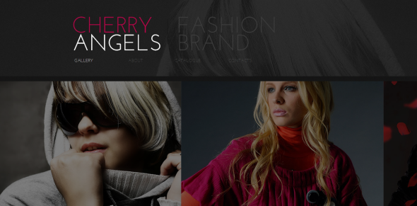 Website Template with Strip Photo Gallery