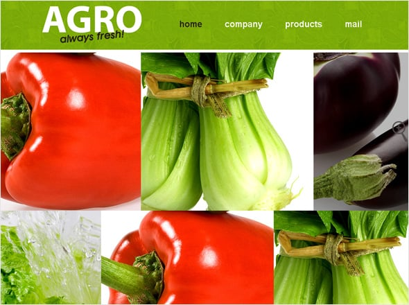 Agriculture Green Website Template