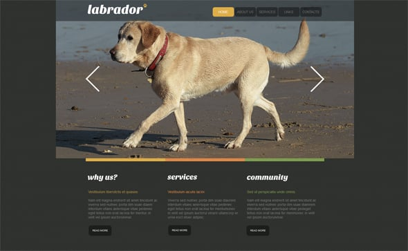 Web template for Dog Breeders