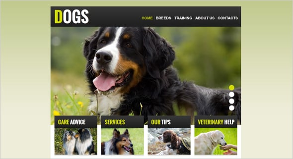 Web Template with jQuery Slider for Dog Breeding