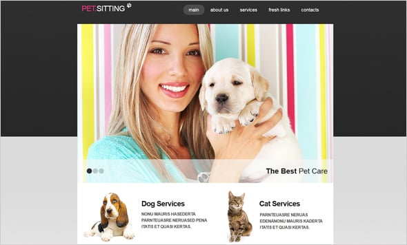 Websiet Design for Pet Sitting