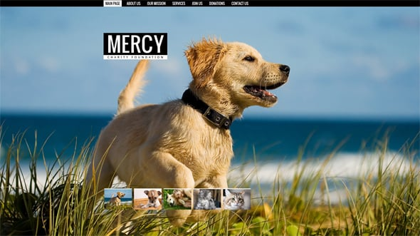 Charity Website Template with Background Images