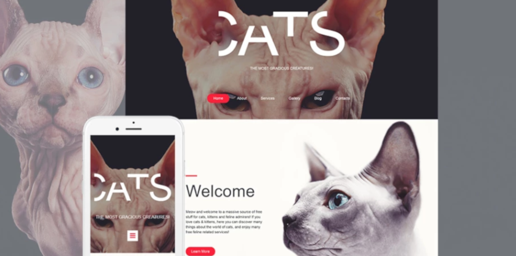 unique pet website template
