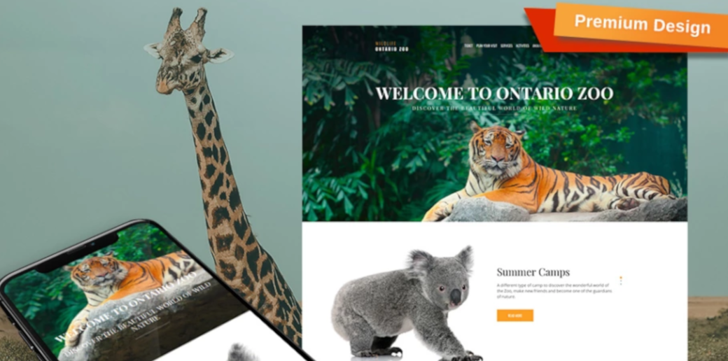 animals website design