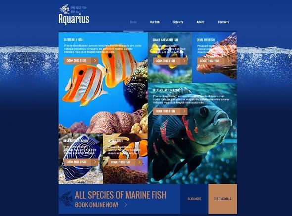 Aquarium Fish Website Template