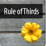 Rule of Thirds: Wise Use in Website Design
