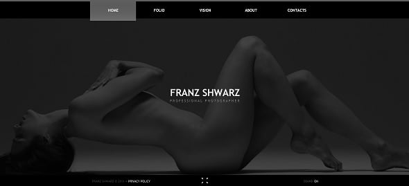 Best Website templates 2014 - Photo Portfolio Website Template