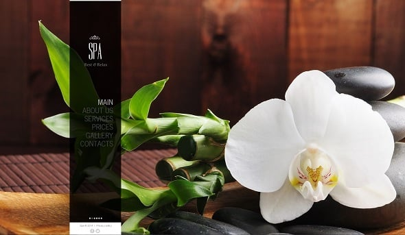 Best Website templates 2014 - Spa Salon Website Template with Large Background