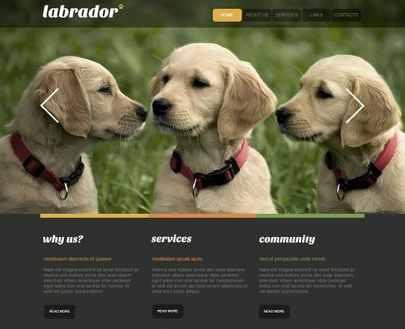 Create a website for dog breeders - Labrador Website