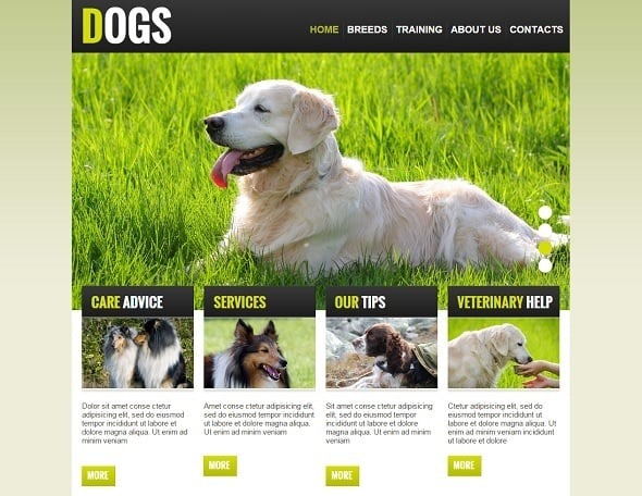 Create a website for dog breeders - Green Website for Dog Breeders