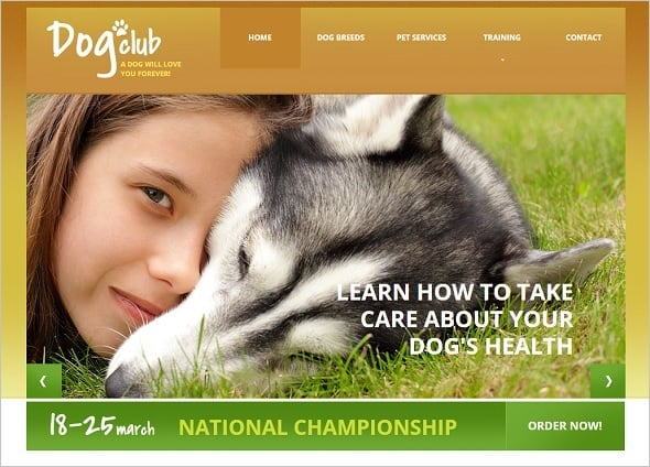 Create a website for dog breeders - Dog Website with Blog