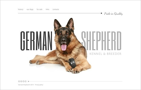 Create a website for dog breeders - German Shepherd Template