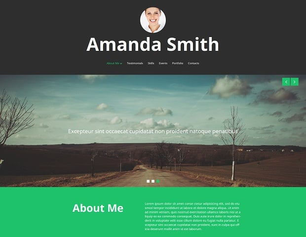 MotoCMS 3.0 Responsive Website Templates - Personal Site