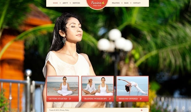 MotoCMS Independence day promo - Yoga template