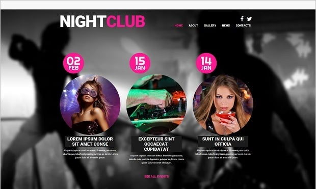 Bestselling website templates summer 2015 - night club