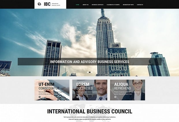 Designing Consulting Agency Website - 54909