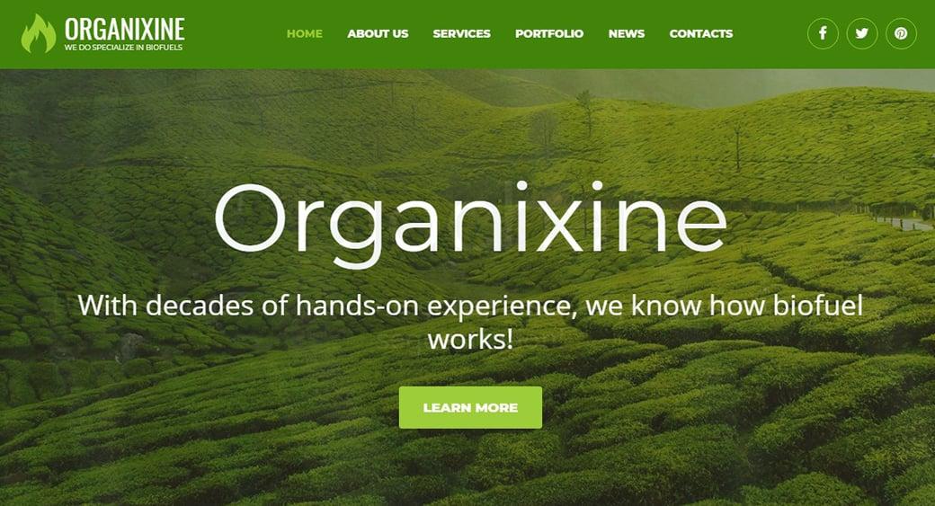 Grün energy website design