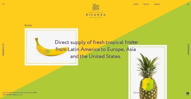 Colors in Web Design 2016 - ricanza