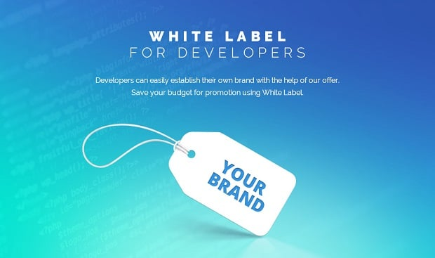 spectrum-business-theme-for website-consulting-white-label