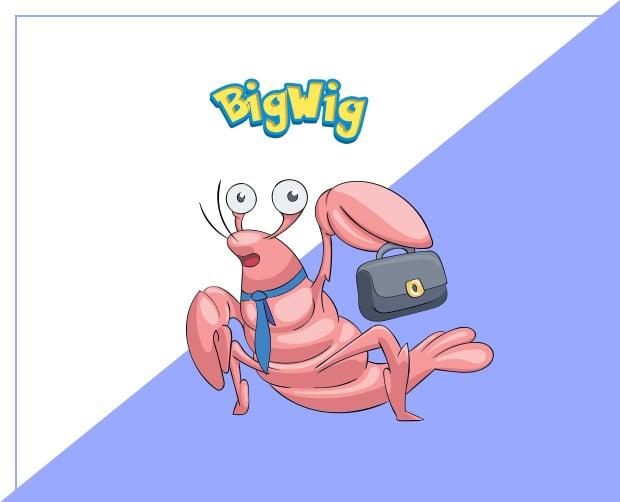 pokemony-bigwig