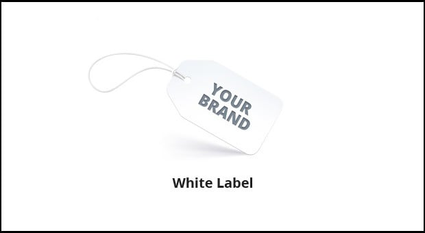 building-websites-white-label