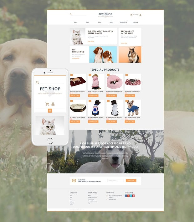 how-to-optimize-your-ecommerce-website-pet-shop-theme