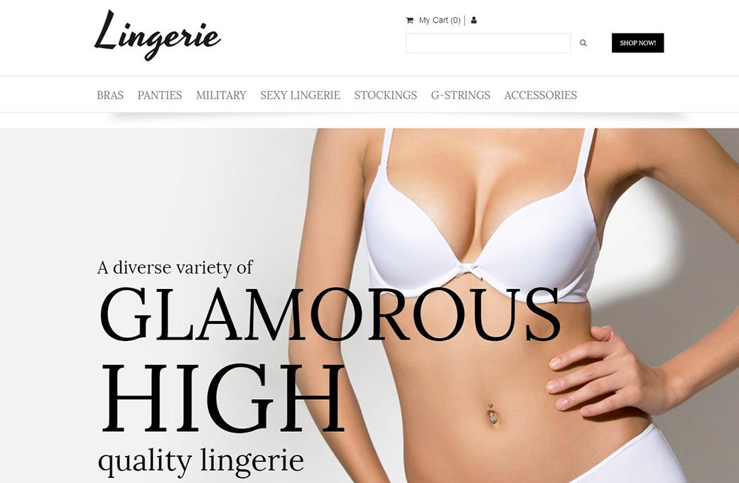 Lingerie Ecommerce Website Template image